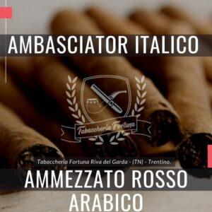 L'Ambasciator Italico Rosso Arabico è un pregiato sigaro dal gusto caldo e avvolgente ove il tabacco viene arricchito con l'aroma e il profumo di un buon espresso italiano.