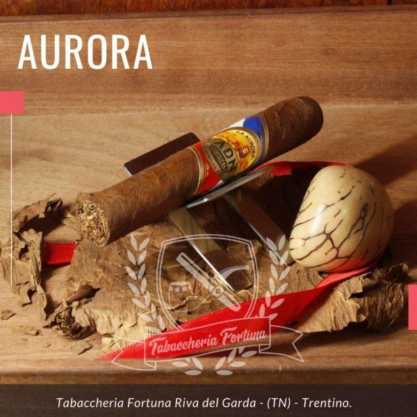 Aurora ADN Robusto. Un aristocratico ed autentico piccolo capolavoro di cui ne percepisco la qualità fin dall'accensione dove le fragranze animali di pelle