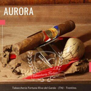 Aurora ADN Toro. Un aristocratico ed autentico piccolo capolavoro di cui ne percepisco la qualità fin dall'accensione dove le fragranze animali di pelle, abilmente miscelate