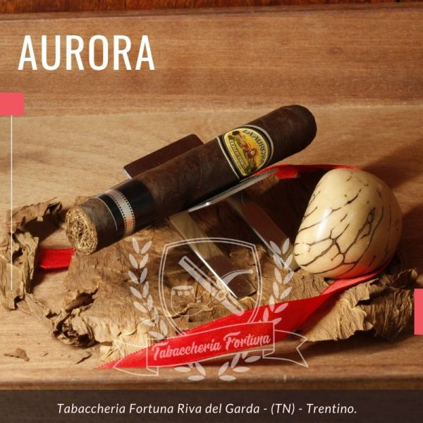 Aurora Broadleaf 1903. È arrivata la linea dei sigari Aurora 1903 Broadleaf. Rispetto al classico Aurora questa linea impiega il prezioso tabacco Broadleaf che significa tabacco dalla foglia larga