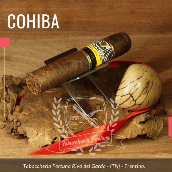 Il Magicos Maduro si presenta un po` tozzo e scuro. Una volta acceso diventa dolce con note di cacao, spezie e caffè