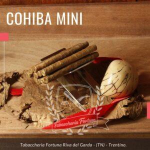 I Cohiba Mini 10 sono il frutto di una selezione curatissima delle cinque migliori Vegas Finas di Vuelta Abajo.