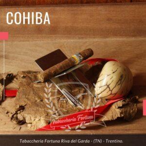 Cohiba Short è sinonimo di sofisticato, esclusivo, lussuoso e trendy.