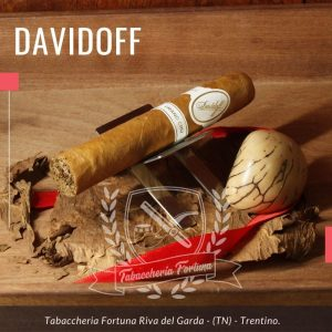 Davidoff Escurio Gran Crue Robustos. Una volta acceso il sigaro, non è necessario cercare lontano le note della terra e del fieno che sono sinonimi di Henke Kelner e Davidoff Cigars