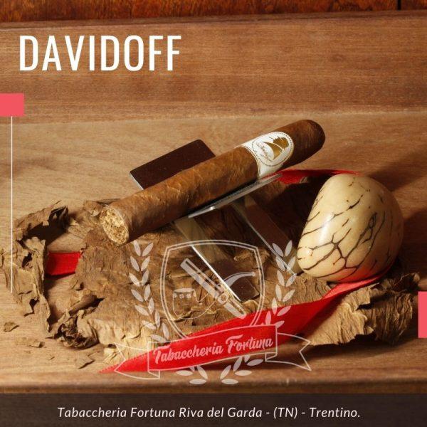 Il Davidoff Winston Churchill Corona è un sigaro dominicano che presenta un cepo di 41 e una lunghezza di 115mm