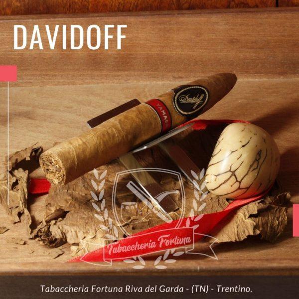 Davidoff Yamasa Piramides, è un sigaro meraviglioso che si propone agli appassionati con un aspetto invitante in termini di colore, lucentezza e oleosità.