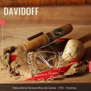 Il Davidoff Nicaragua Robusto è descritto abbastanza chiaramente con il suo nome: è un puro nicaraguense, che è piuttosto insolito per Davidoff.