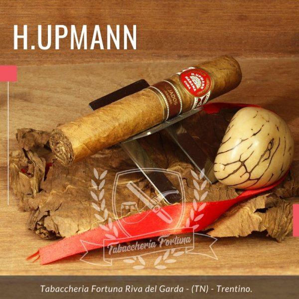 La caratteristica principale della serie Añejados è che viene fatta invecchiare per almeno 5 anni dopo la fabbricazione dei sigari