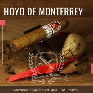 Il Sigaro No. 2 di Hoyo de Monterrey Epicure offre una combinazione di sapori dolce e più dolce all'inizio del fumo.