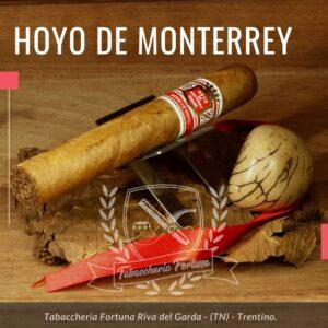 L'Hoyo de San Juan della famosa fabbrica Hoyo di Monterrey offre un grande sigaro con una lunghezza di 150 mm e un cepo di 54.