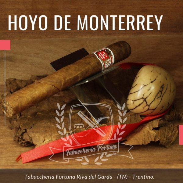 Ad una prima analisi, questo Hoyo de Monterrey Palmas Extra, si presenta con una capa ben tesa, ruvida, con leggere venature, color colorado.