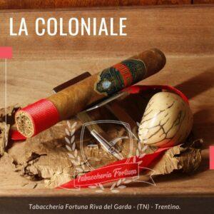 Il Coloniale Joya del Caribe Toro. Sentori mandorla amara, miele di castagno, Tuttaviaevolvendo in una miscela di aromi che coinvolgono sia il gusto che l'olfatto.