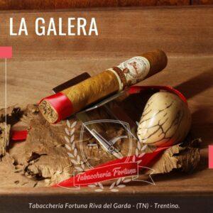 La Galera Bonchero 4.Medio-alta la forza, il corpo è degno di nota, con una paletta aromatica equilibrata, dominata da legno e terra, e inflessioni di spezie, tostatura e cacao.