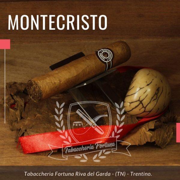 Il Montecristo Petit Edmundo è un sigaro deciso e pieno di personalità, dal calibro grosso, ma corto, per venire incontro alle necessità del mercato