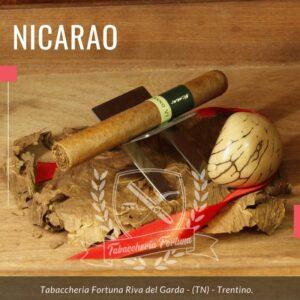 NICARAO CLASSICO MINUTOS Come tutti gli aristocratici ti affascina con la sua eleganza, con le sue maniere educate, con il suo linguaggio forbito.