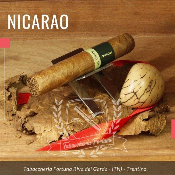 Il Nicarao Exclusivo Robusto non è un sigaro per tutti. E' complesso, Robusto di nome e di fatto. Se volete provarlo, deve piacervi questa linea e il mondo nicaraguense altrimenti rischiate di non apprezzarlo. E' senza dubbio un gran sigaro.