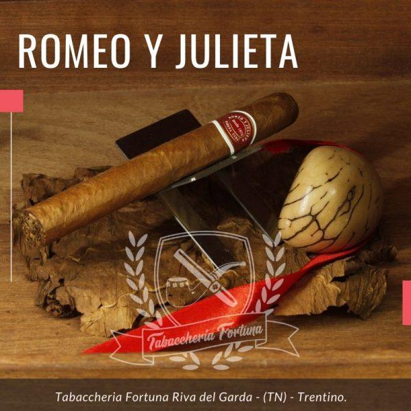 Romeo y Jilieta Tobos N. 1 è un pratico tubos in uno dei formati piu` classici della gamma cubana; nonostante la dimensione lo possiamo tranquillamente consigliare a tutti i meno esperti.
