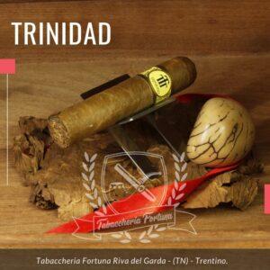 Il Sigaro Trinidad Vigia è riuscito a soddisfare la maggior parte dei fumatori in tutto il mondo