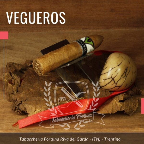 Il Vegueros Mañanitas offre una fumata breve che però tarda nella sua evoluzione per arrivare alla piacevolezza.