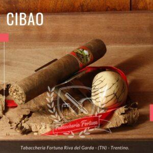 Il Cibao Corona Gorda regala un fumo medio-delicato, sigaro liscio, cremoso e setoso, con gusto al caramello e una lunga finitura nocciola.
