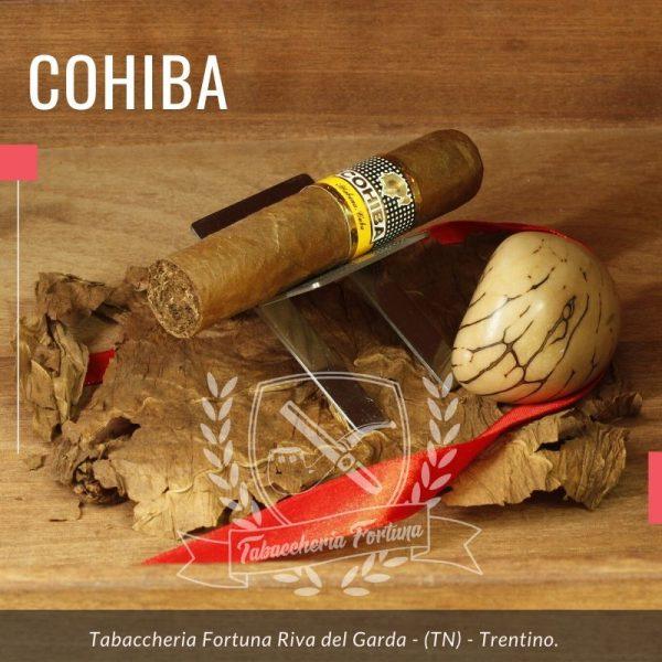 Il Cohiba Medio Siglo, diventa il primo nuovo sigaro ad ampliare la Linea 1492 dopo il Siglo VI lanciato nel 2002