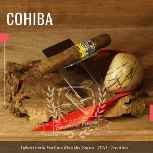 """Come l'ostrica racchiude la sua preziosa perla, il nuovo tubo di Cohiba racchiude la più prestigiosa """"Perla"""" del vitolario di Habanos. Il Cohiba Siglo I."""