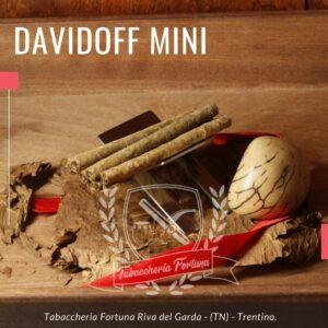 Davidoff Mini Cigarillos Silver. La predominanza di varietà più leggere di tabacco Mini Cigarillos è sottile ed elegante, ogni respiro ha un sapore armonico, morbido, aromatico e contemporaneo.