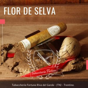 """Flor de Selva Robusto. Il Robusto è senza ombra di dubbio la """"punta di diamante"""" della produzione, sono infatti sigari di ottima fattura e molto competitivi sul mercato rispetto ai parivitola cubani o caraibici."""