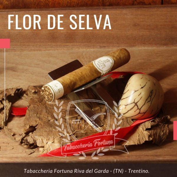 Flor de Selva Siesta. Il sigaro è avvolto in una fascia colorado claro, ben tesa, ma un po' ruvida al tatto.