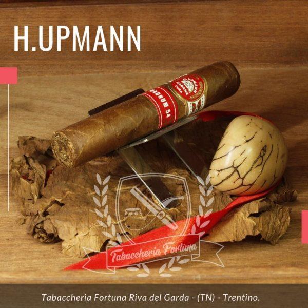 Come con tutti i sigari di H. Upmann, il Sigaro Magnum 54 offre un fumo da leggero a medio con note di cedro prominenti e cremose.