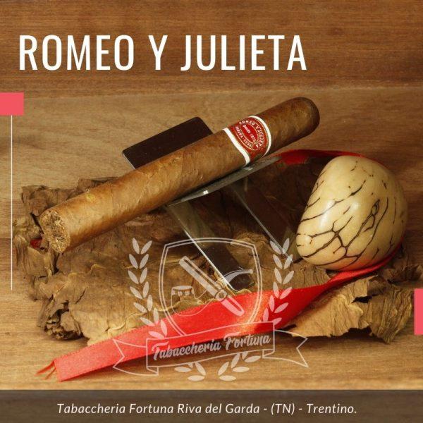 Sigaro Romeo y Julieta Mille Fleurs. La ligada è tipica di Romeo y Julieta e vale la pena ricordare che, in questo formato, questo è uno dei sigari più apprezzati sui mercati di tutto il mondo
