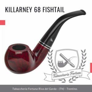 Killarney 03 Fishtail. Una forma di mela piegata compatta e arrotondata.