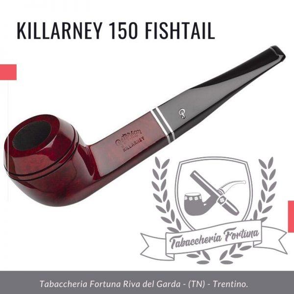 Killarney 150 Fishtail. Il 150 è un'interpretazione Peterson di una forma di bulldog dritto.