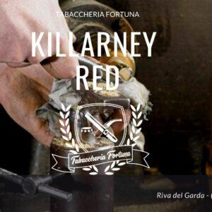 KILLARNEY RED