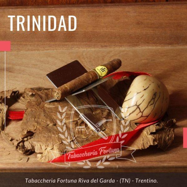 Trinidad Short. Un bel sigaro con i sapori cremosi e delicati di Trinidad. Un piccolo compagno perfetto per momenti di grande intensità.