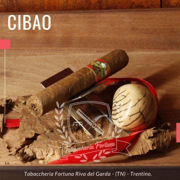Cibao Robusto. Il filler domenicano di questo splendido sigaro è cresciuto nella valle del Cibao, al centro dell'isola.